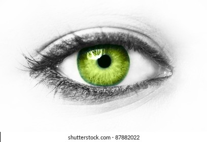 Green eye isolated on white