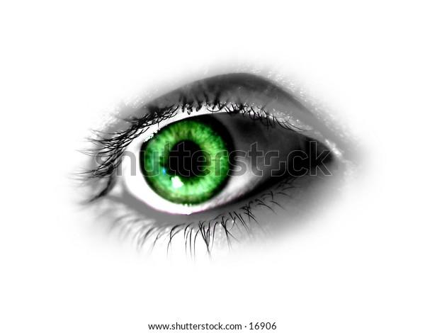 Green Eye isolated on white background