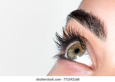 green eye macro
