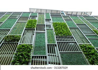 Green facade, vertical garden in architecture. Ecological building. Green architecture