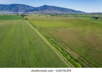 Green farm fields of grass and uncut hay are divided by an irrigation canal in midwest.