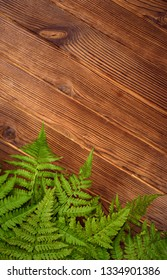 green fern leaves on brown oak wood background with copy space for text