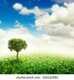 Green field with alone tree under blue sky. Beauty nature background