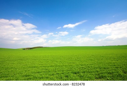green field and blue sky 10.