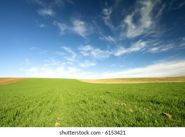 green field and blue sky 8.