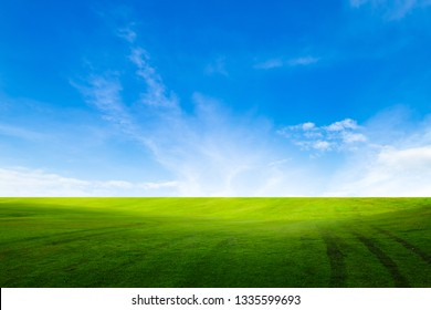 green field with blue sky background