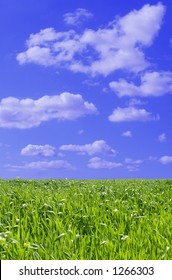 green field with blue sky and fluffy clouds