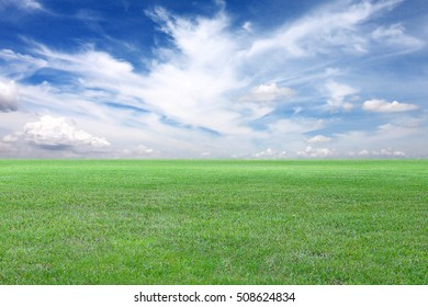 Green Field and Blue sky view,Green lawn for the design nature background.