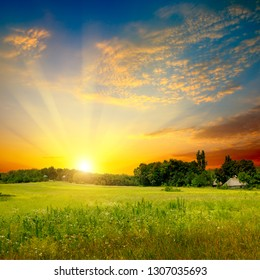 Green field and bright sunset. Rural landscape.