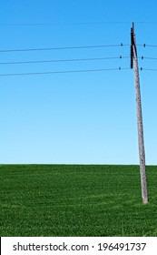 A green field with a clear blue sky with a utility pole and wires stretching across.