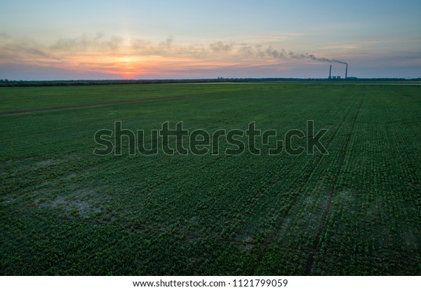 Green Field and colorful sunset. Aerial photo, made by drones