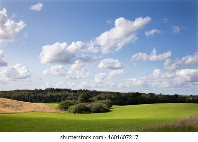 Green field in Isterød in Denmark in the summer