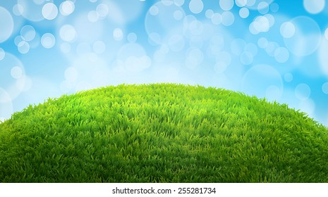 green field of fresh grass. natural easter background with place