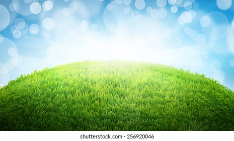 green field of fresh grass. natural easter background with place for your text