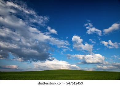 Green field of grass and blue sky with clouds.