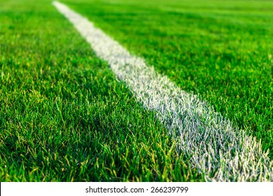 Green field grass on sport stadium - stock photo