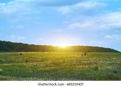green field landscape with blue sky