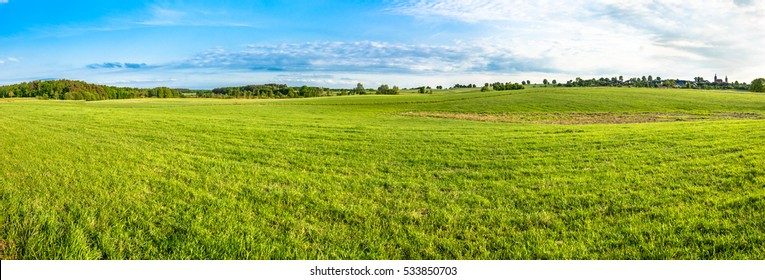 Green field landscape. Panoramic vista of spring meadow with grass and blue sky.