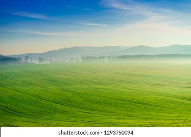 Green field and mountains hills landscape