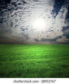 green field and nightly sky