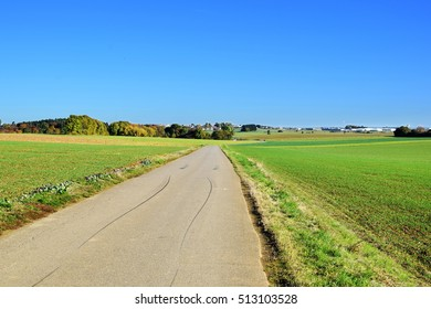 Green field on sunny day with blue sky