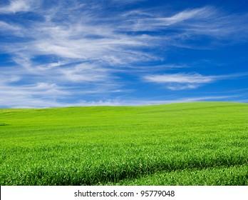 green field over blue cloudy sky landscape