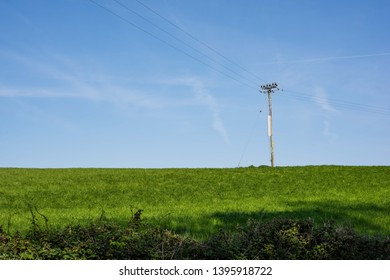 Green field with power lines