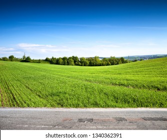 Green field and road, rural landscape
