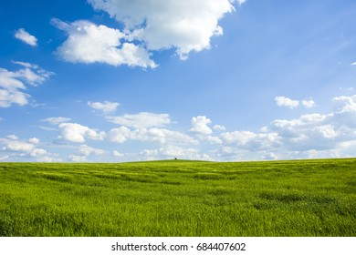 Green field, rural landscape