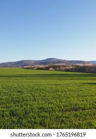 Grünes Feld und Schlesische Beskid Mountains sind vom Sportflugplatz in der europäischen Stadt Bielsko-Biala in Polen zu sehen, klarer blauer Himmel im Jahr 2020 warm sonnigen Frühlingstag im April - vertikal.