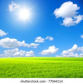Green field,  sky and sun