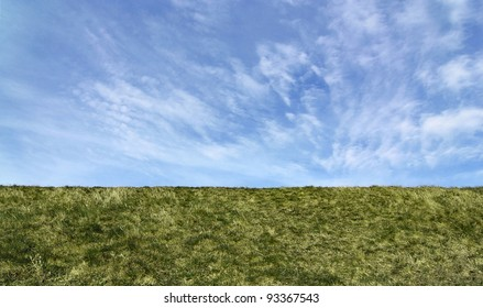Green field. Straight horizon, suitable as background or banner.