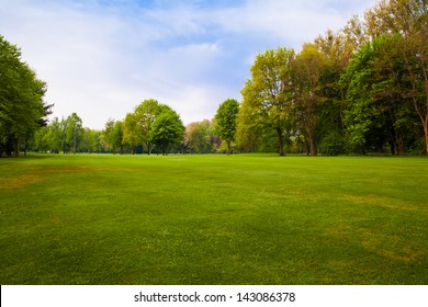 Green field and trees.