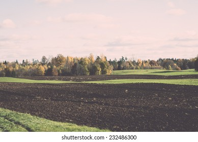 green field with trees in the autumn in country. Vintage photography effect.