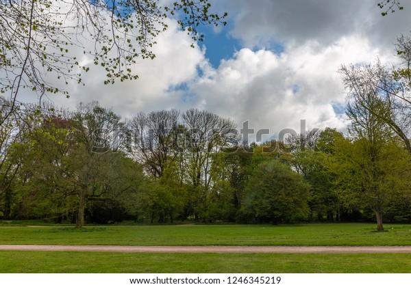 green-field-trees-sky-600w-1246345219.jp