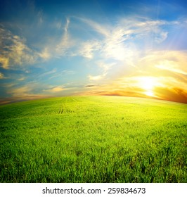 Green field under beautiful clouds at sunrise