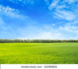 Green field under blue sky with white clouds