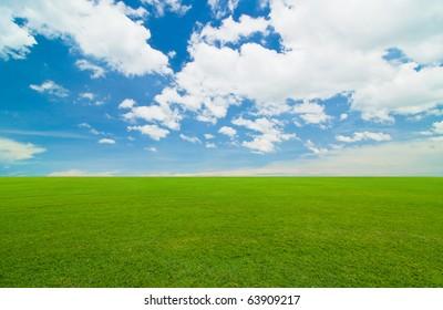 green field under the blue sky