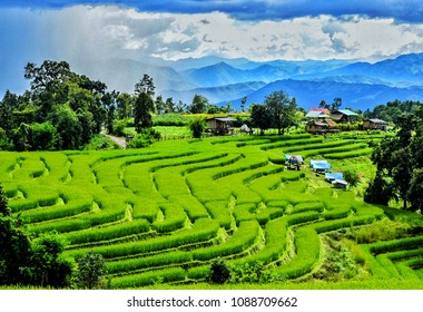 Green field view at Pa Pong Piang Rice Terraces, Mae Chaem, Chiang Mai, Thailand, the nature of the homestay is during the rainy season of Thailand (July to September every year), soft focus