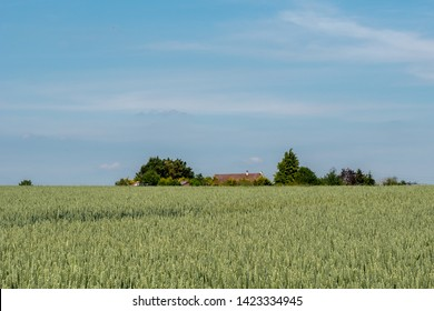 Green fields of Auvers-sur-Oise, France