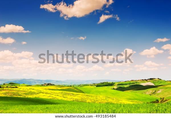 Green fields and blue sky. Beautiful Tuscany landscape, province of Certaldo, Italy