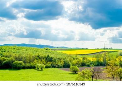 Green fields, Croatia, Slavonia region