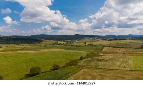 green fields and crop field in countryside