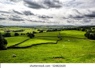 Green Fields near Austwick, Yorkshire Dales