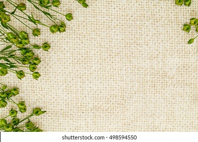 Green flax twigs with linseed on the natural linen fabric background