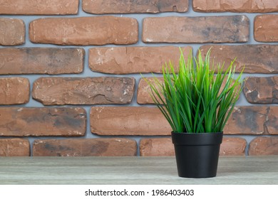 A green flower on a table with a red brick background