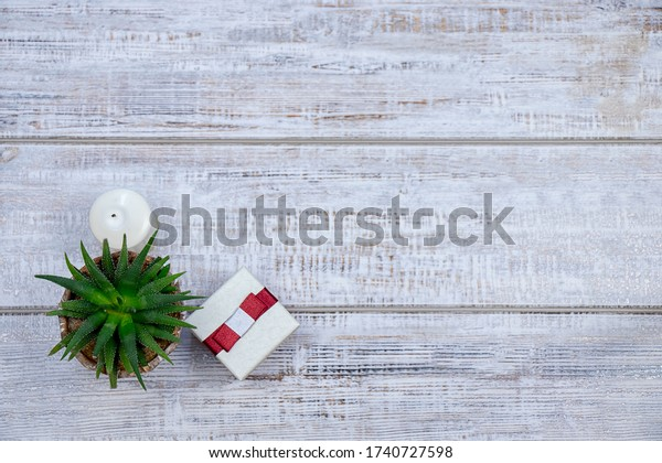 Green flower with spiky leaves and gift box amid parquet board