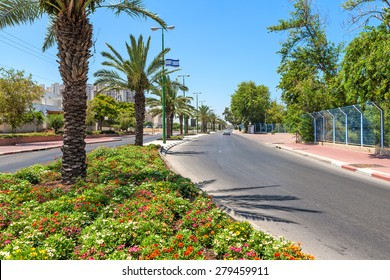 Green flowerbed and palms along urban road in Ashqelon, Israel.