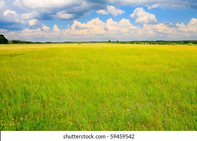 Green, flowery meadow and cumulus clouds above.