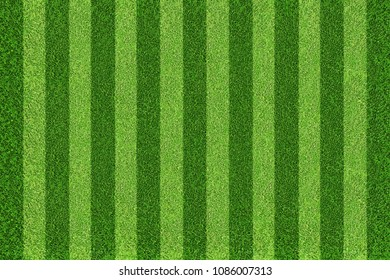 Green football field background. Top view